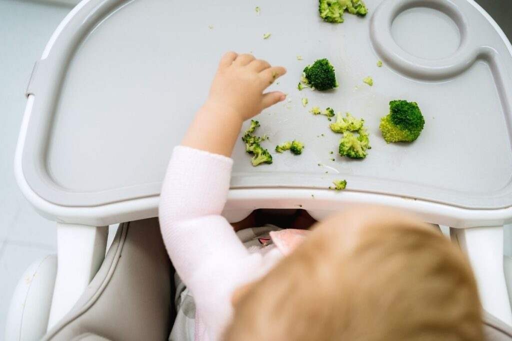 iron and baby-led weaning